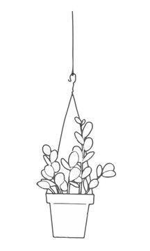 観葉植物 グリーンドラム モノクロ