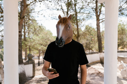 Unrecognizable male wearing ridiculous horse mask using cellphone while standing in urban park
