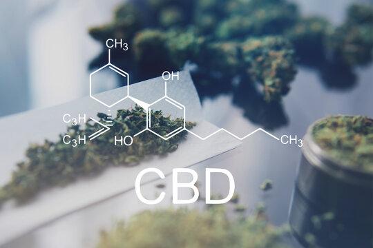 CBD formula cannabis oil and marijuana. Weed Decriminalization. Cannabis legalization medical pot. Cannabidiol
