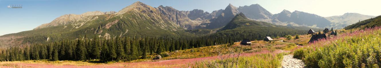 Panorama Tatr widok na Halę Gąsienicową - fototapety na wymiar