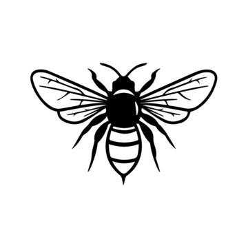 bee clipart black and white, bee vector