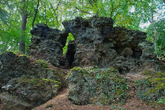 Lava rock in a forest of the vulkaneifel in Rhineland-Palatinate, Germany