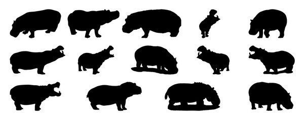 Fototapeta A set of silhouettes of hippopotamuses isolated on white background