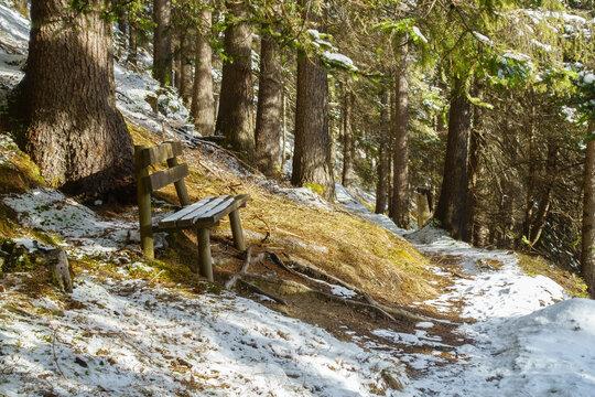 Rastbank in einem leicht verschneitem Wald am Wegesrand