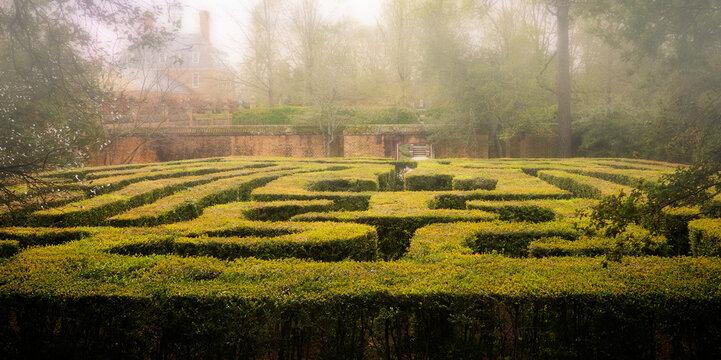 Hedge Maze in Williamsburg Virginia