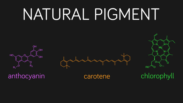 Illustration of natural pigment molecules: anthocyanin, carotene, and chlorophyll.