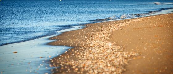 Na brzegu morza piaszczysta plaża.