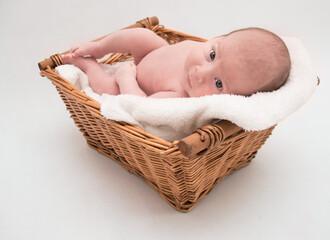 Fototapeta noworodek w koszu obraz