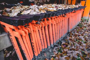 Torii gates and dry leaves of autumn at Fushimi Inari taisha shrine, Kyoto, Japan