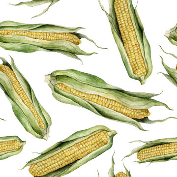 Watercolor seamless pattern of corn and leaves. Hand painted food isolated on white background. Autumn harvest festival. Botanical illustration for design, print or background.