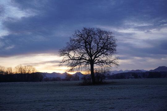 Sonnenaufgang Neujahr 2021 bei Bruckmühl