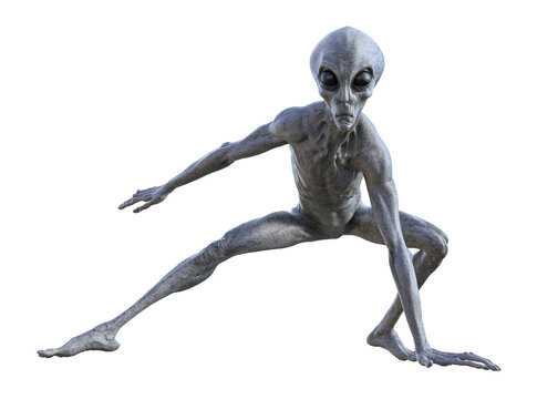 Illustration of an alien crouching in a ready to attack pose on a white background.