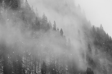 Foggy winter forest landscapes along the shores of the Wagital lake in the idyllic pre-alps region of the Schwyz canton, Central Switzerland Fotobehang