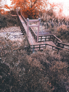 Warm Toned Cool Winter Bridge Hiking Trail