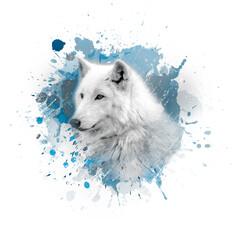 white wolf on white