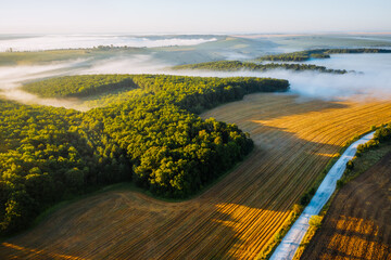 Wall Mural - Splendid view from a drone flying over the morning agricultural land.