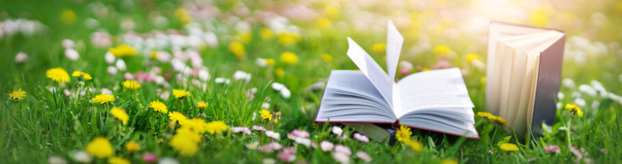 Open book in the grass on the field on sunny day