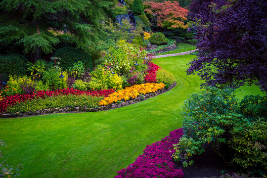 Colourful flower bed in a park