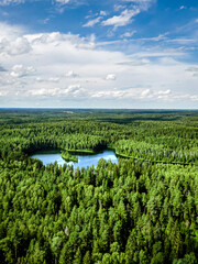 Top view of a forest lake.