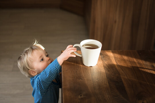 Little child try to grab cup of hot tea on the table. Attention hot content concept.