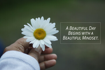 Inspirational quote - A beautiful day begins with a beautiful mindset. Motivational words concept with hand holding a white daisy. Happiness and success concepts.