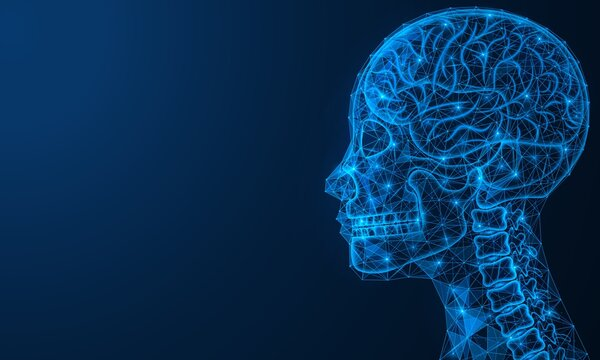 Scientific medical research of the brain. Bone tissue of the skull and upper spine. Polygonal design of a human head made of interlocked lines and dots. Blue background.