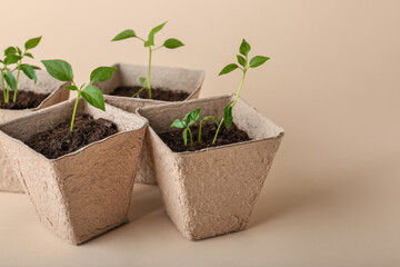 Peat pots with soil and green seedling on color background