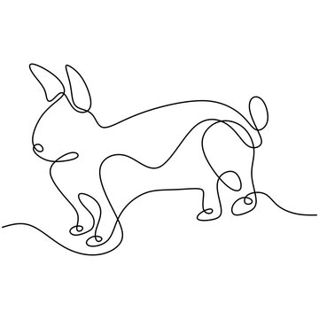 Hare continuous one line drawing. Easter bunny rabbit jumping in the garden isolated on white background. Cute pet animals concept. Vector minimalistic hand drawn illustration