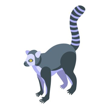 Tropical lemur icon. Isometric of tropical lemur vector icon for web design isolated on white background