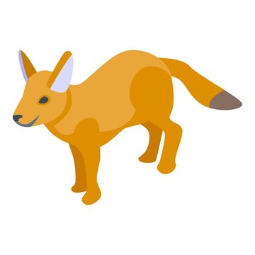 Red fox icon. Isometric of red fox vector icon for web design isolated on white background