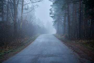 asphalt road in the fog that leads through the forest in the distance you can see the lights of the car