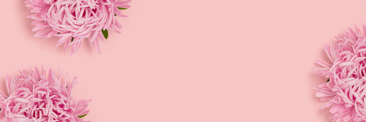 Banner with frame made of aster flowers on a pink pastel background. Springtime tenderness concept with copyspace.