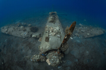 World War 2 Mitsubishi Zero fighter plane wreck underwater covered in coral growth in Papua New Guinea