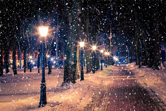 Winter night park with lanterns, pavement and trees covered with snow in snowfall.