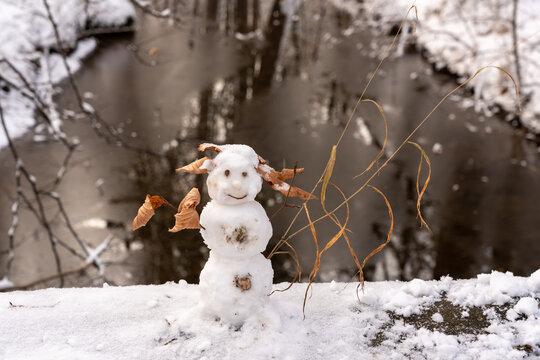 Lustiger Schneemann mit Blattschmuck