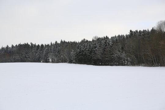 Der Weg am Waldrand im Winter, Schnee ist so schön