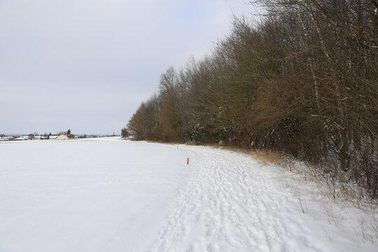 Der Weg am Waldrand - Winter und Schnee