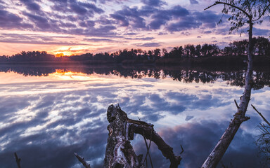 purple sunset over the river, the sky is reflected in the water, river bank, driftwood and tree on the bank