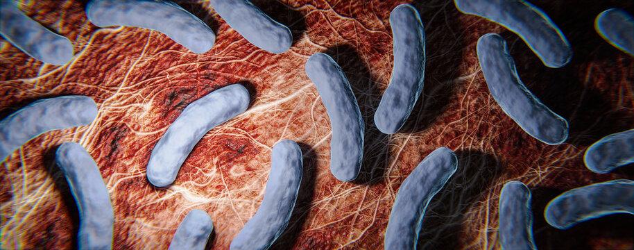Legionellen Bakterien unter dem Mikroskop - 3D Visualisierung
