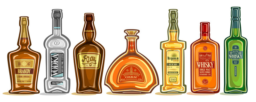 Vector Set of Alcohol Bottles, group of cut out illustrations of hard spirit drinks in bottles with decorative labels, lot collection of cartoon liquor bottles in a row on white background.