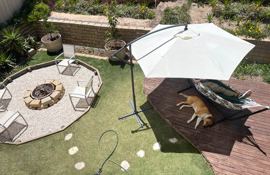 Average Australian back yard with umbrella fire pit deck relaxing dog hot summer day