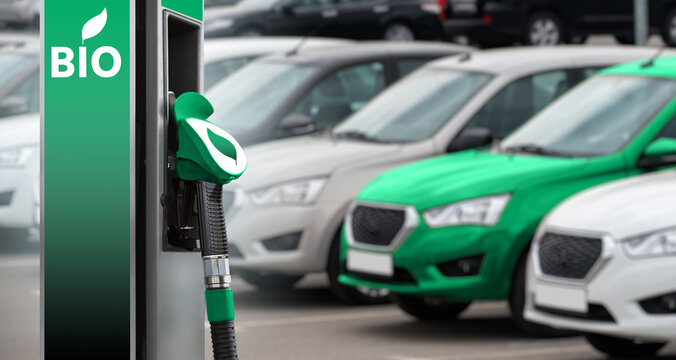 Biofuel filling station on a background of cars. One car green.