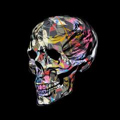 human skull with brain