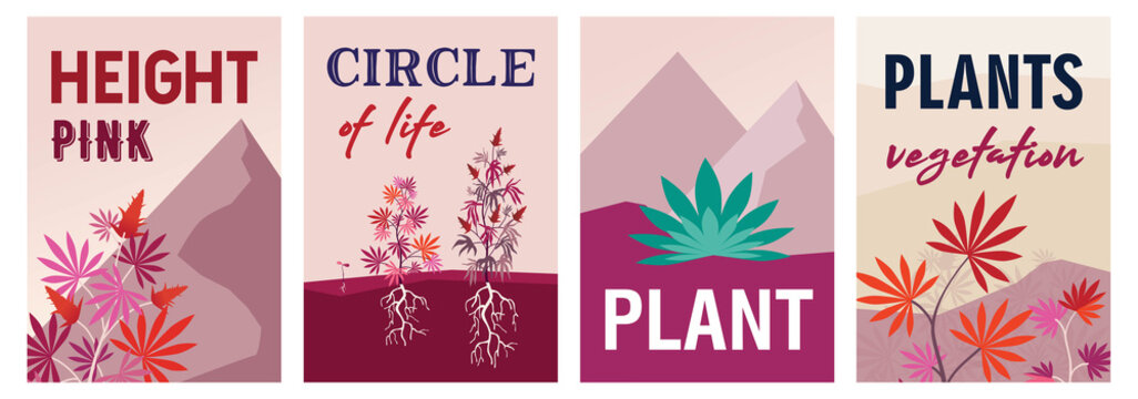 Bright pink cannabis posters design with bushes