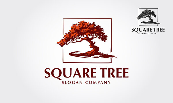 Square Tree Vector Logo Template. This illustration of a tree where are inside a square frame. This logo is suitable for every kind of business.