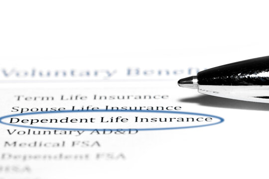 Highlighting dependent life insurance on annual benefits plan document.