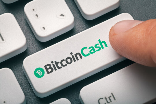 Cryptocurrency trading concept: Male hand pressing computer key with Bitcoin cash | Bch logo. Cryptocurrency mining, trading, market concept.