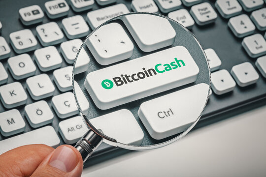 Cryptocurrency trading concept: Male hand holding magnifying glass and focusing computer key with bitcoin cash| bch logo. Cryptocurrency mining, trading, market concept.