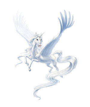 flying pegasus on wings isolated on white background