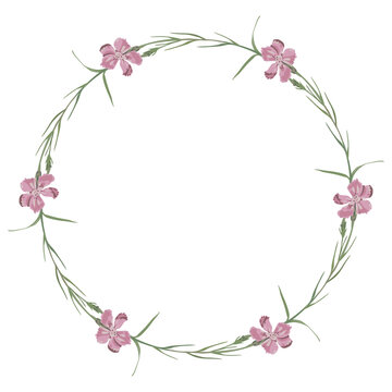 Round floral decor or frame. Wreath of wild pink carnation flowers.